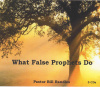 What False Prophets Do