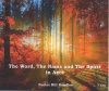 The Word, the Name and the Spirit in Acts